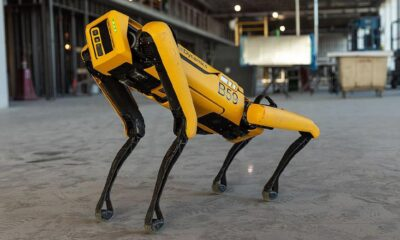 Hyundai confirms the purchase of a controlling stake in Boston Dynamics for $ 800 million